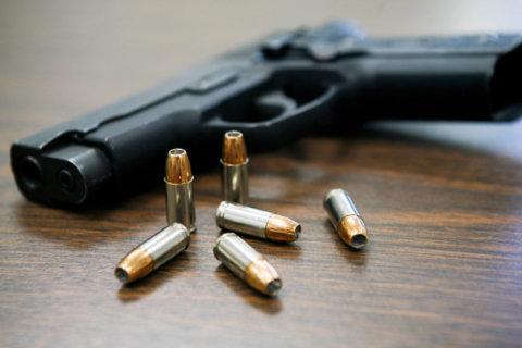 Gun Violence in Orlando