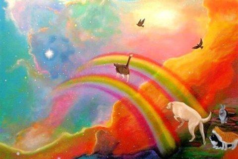 Rethinking the Rainbow Bridge