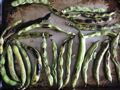 Charred fava beans