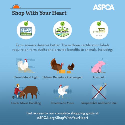 ASPCA infographic